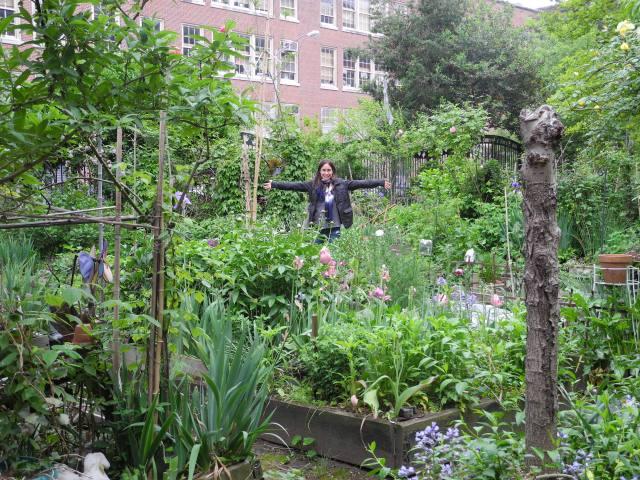 LES garden